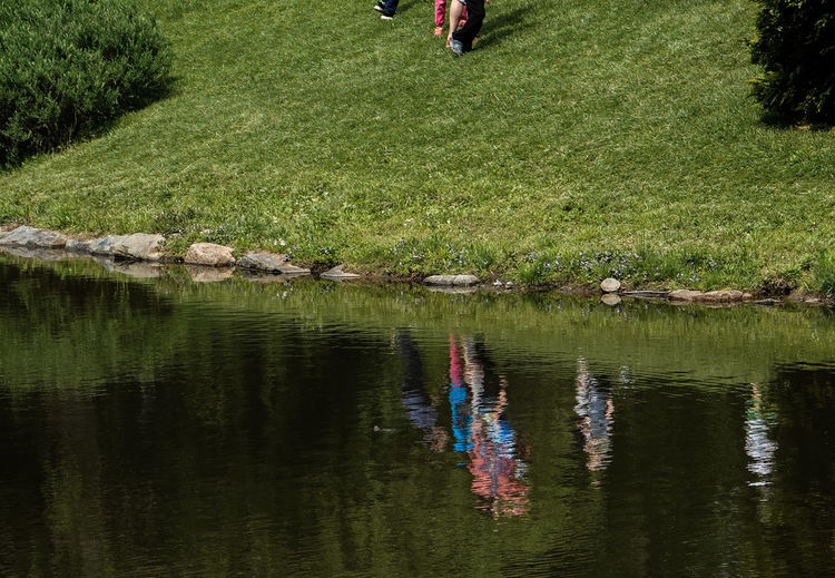 People in water Water Reflection Plant Grass Lake Nature Green Color Real People People Leisure Activity Low Section Waterfront Human Body Part Reflections In The Water Lakesideview Pond People In The Water