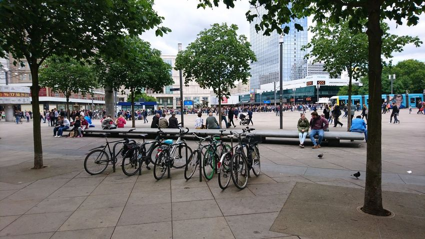 Bicycles at Alexanderplatz. Trees Berlin Germany B Capital B Alex Alexanderplatz Plaza Square Bicycle Bicycles Bike Bikes People Shopping ♡ Shopping Downtown City Center Urban Landscape City Tree Bicycle City Life Sky Architecture