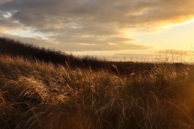 Sunset from the Sand Dunes at Mablethorpe Nature_collection