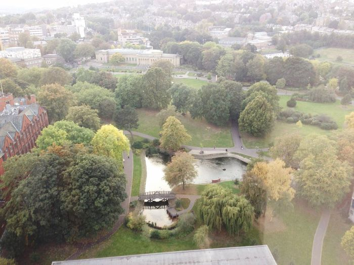 Weston Park from the top of the Art Tower (Sheffield, South Yorkshire, England) ! Traveling Sheffield Parks England Southyorkshire Nature