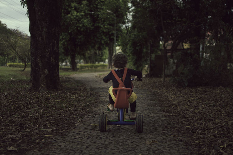 Rear View Of Boy Riding Tricycle On Footpath At Park
