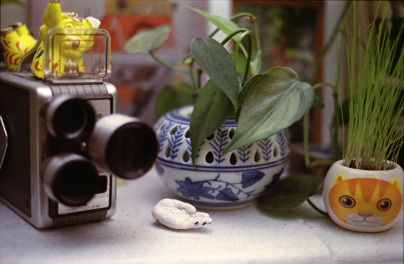 Close-up of artificial hand by antique movie camera and houseplants on table