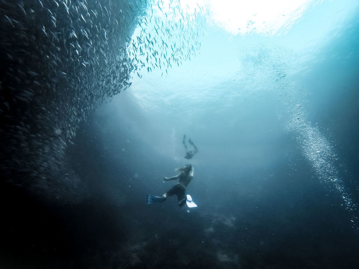 Scuba Diving, Philippines, Julie Gatto Couple Adventure Day Exploration Freediving Full Length Leisure Activity Low Angle View Men Nature One Person People Real People Scuba Diver Scuba Diving Sea Swimming UnderSea Underwater Water