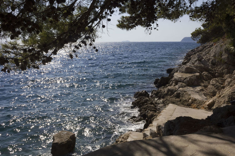 Lapad Dubrovnik Outdoors Sea Seascape Croatia Adriatic Sea Croatia ♡ Nobody Summer Cliff Cliffside Water Tree Rock Beauty In Nature Land Rock - Object Nature Solid Scenics - Nature Beach Sky No People Plant Day Motion Tranquility Wave Tranquil Scene Rocky Coastline Breaking