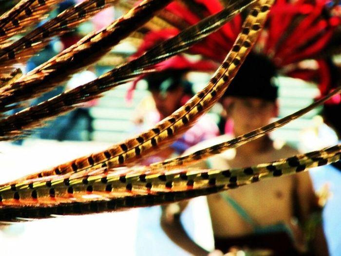 Aztecs Dance Art Mexico Penacho Feaders Colours Lines History Folklore