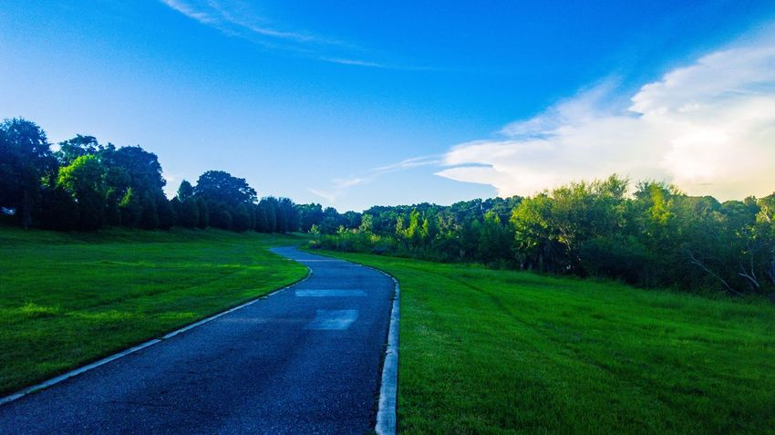 Grass The Way Forward Tree Sky Tranquil Scene Road Long Landscape Tranquility Transportation Green Color Blue Narrow Cloud Solitude Plant Growth Countryside Diminishing Perspective Green Park - Man Made Space Paths Of Life Check This Out Hanging Out Majestic