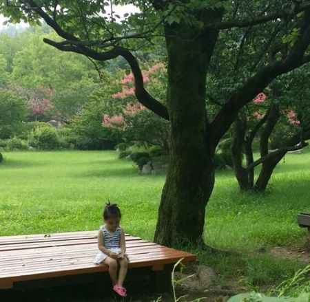 Sitting Alone Child Nature Little Girl One Person Lonely Girl Sitting In The Park