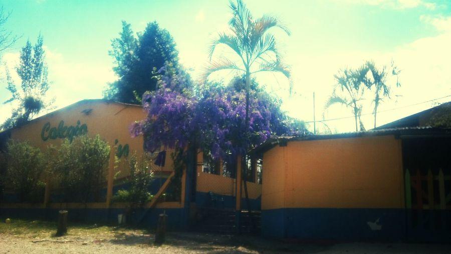 Colegio Coban