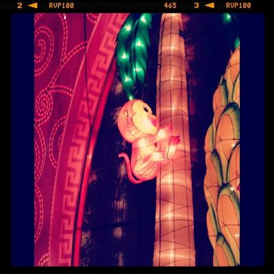 My Chinese star sign The Monkey Singapore ASIA Yearofthehorse