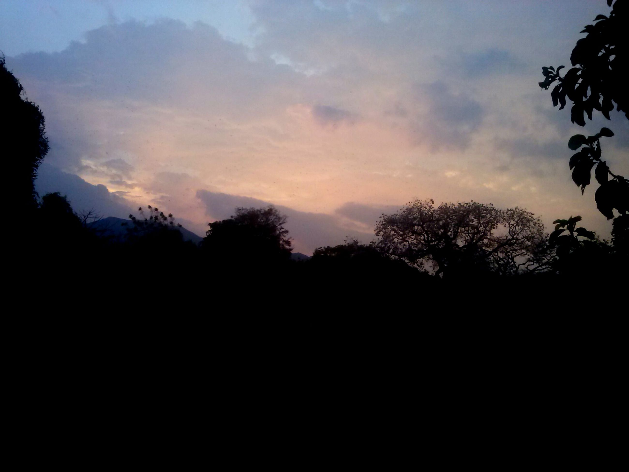 silhouette, tree, sky, tranquility, sunset, tranquil scene, scenics, beauty in nature, nature, dark, cloud - sky, dusk, outline, low angle view, idyllic, landscape, cloud, outdoors, growth, no people