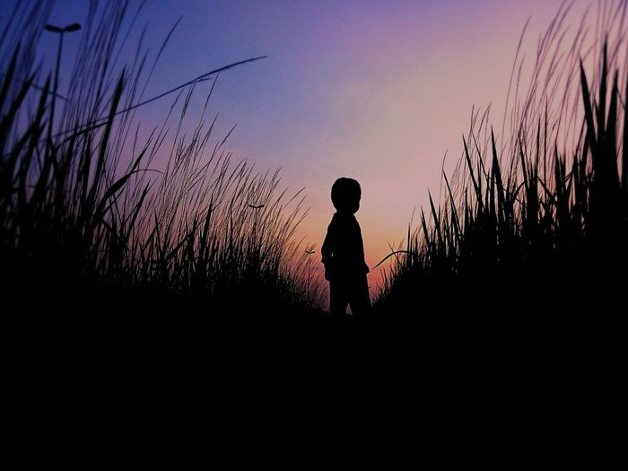 Kid portrait on vignette. Love this kind of color. BiTerabur Kidsphotography Silhouette Sunset_collection EyeEm Malaysia Phoneography Huawei Beautiful Sunset Habitude EyeEm Best Shots