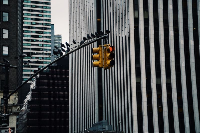 Low Angle View Of Traffic Light Against Buildings
