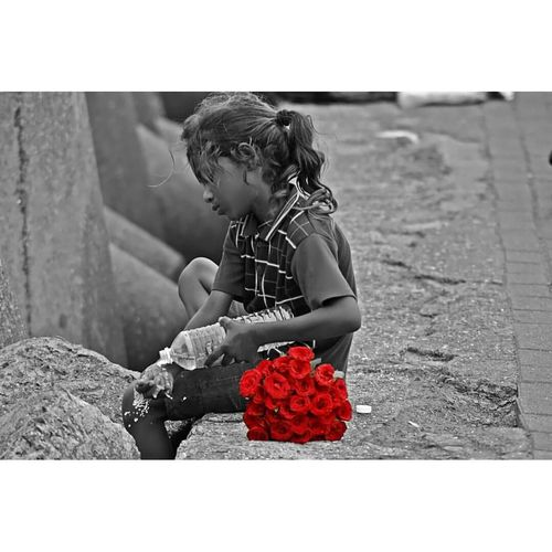 """""""Every rose has its own story"""" literally the picture speaks all"""" Some people don't get what we have and some people just wants to get rid off of what we want! This is life..... #Pain BeTHANKFUL Cry Emotions Helplessness Karma Nolaughter Painfulmemories RespectYourself Roses Uniqueness Adapted To The City"""