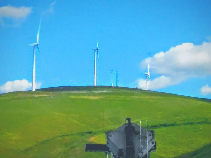 Taking Photos Enjoying Life This Week On Eyeem Telling Stories Differently My Point Of View Wind Turbines On A Field Wind Power Wind Turbine Hello World Driving Highway 580 Road Side View Drive By Photography Freeway Scenery Green Green Hillside