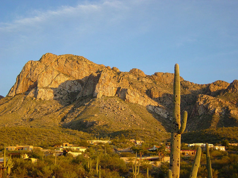 """Feb 2002 - """"Evening in Tucson"""" Scenics - Nature Beauty In Nature Day Environment Formation Land Landscape Mountain Mountain Peak Mountain Range Nature No People Non-urban Scene Outdoors Plant Remote Rock Rock - Object Rock Formation Saguaro Cactus Scenics - Nature Sky Sunlight Tranquil Scene Tranquility"""