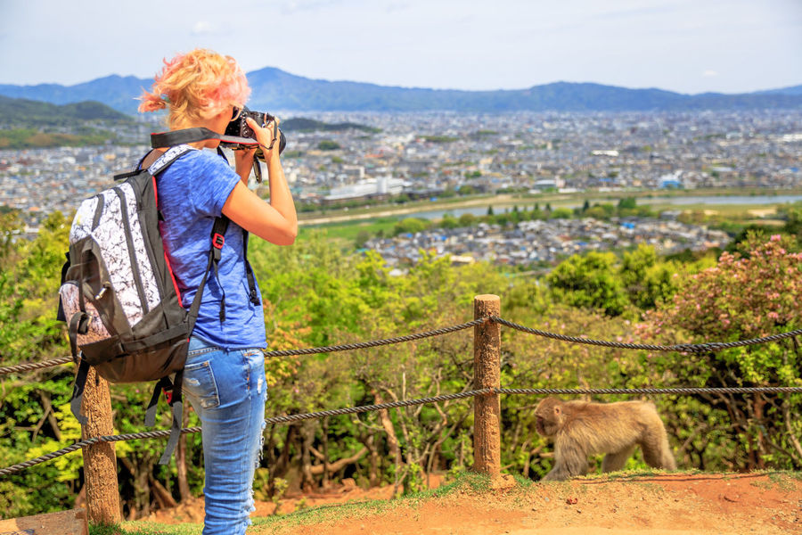 Kyoto, Japan : visitors atop of popular touristic attraction Iwatayama Monkey Park in Arashiyama. People admiring spectacular skyline of Kyoto, Japan. Leisure and tourism concept. Young happy woman eating at Japanese macaque inside popular Iwatayama Monkey Park in Arashiyama, Kyoto, Japan. Tourist enjoys interaction with Macaca Fuscata monkey. Leisure and tourism concept. Arashiyama Feeding  Feeding Animals Fun Iwatayama Monkey Park Japan Japanese  Kyoto, Japan Macacos Touristic Tourists Woman Activity Adult Animal Apes Camera - Photographic Equipment Casual Clothing Day Domestic Animals Holding Iwatayama Kyoto Kyoto City Kyoto,japan Macaca Macaca Fascicularis Mammal Monkey Nature Outdoors Park People Peoplephotography Photographing Photography Themes Real People Standing Technology Three Quarter Length Wildlife Women
