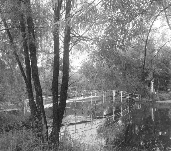 Blackandwhite Photography Bridge Nature Oklahoma Waterbridge Water Reflections