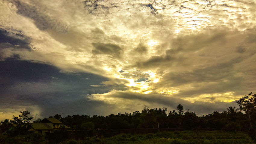 It is beautiful painting of God's creation (sunset in the sorong of West papua) EyeEmNewHere Tree Sunset Storm Cloud Dramatic Sky Sky Cloud - Sky The Great Outdoors - 2018 EyeEm Awards