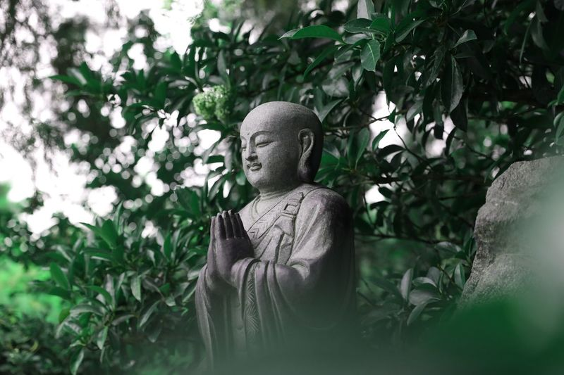 View of buddha statue against plants in garden