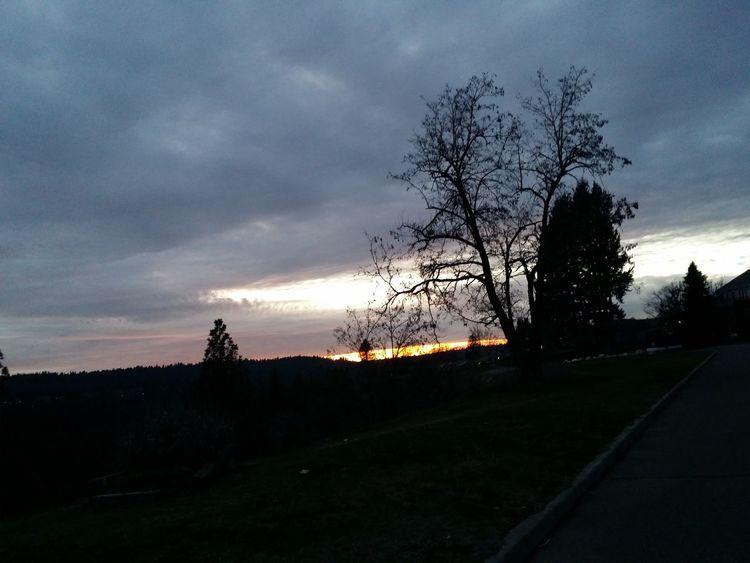 Evening Evening Sky Dusk Colours Dusk Sky Silouette & Sky Silhouette_collection Sunset Dusk Drive Sunset_collection Sunset Silhouettes Dusk Sun