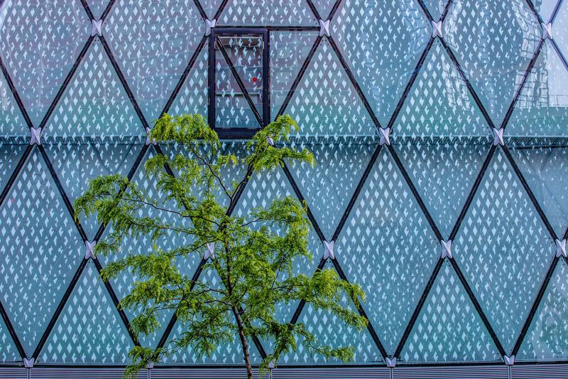 Blue City Door Glass - Material Green Color Lines Oroszphotography Windows The Architect - 2017 EyeEm Awards