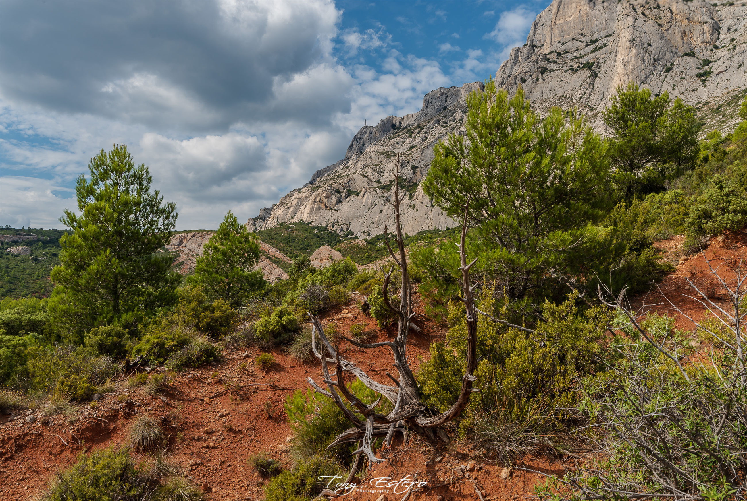 plant, cloud - sky, sky, mountain, beauty in nature, tranquil scene, tree, scenics - nature, landscape, non-urban scene, tranquility, nature, environment, day, no people, land, rock, growth, rock - object, remote, outdoors, formation, arid climate, mountain peak