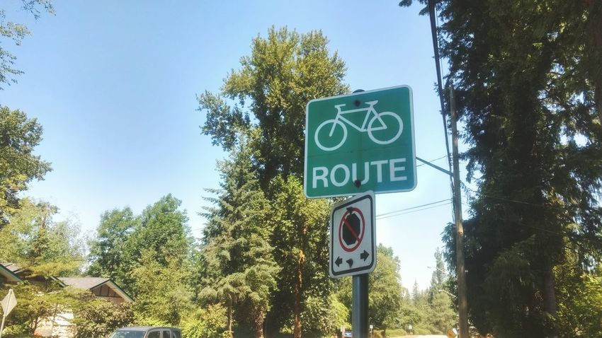 EyeEm Best Shots EyeEm Selects Light Sun Bike Bike Route Route Tree Road Sign Communication Text Sky Information Sign Directional Sign Information Symbol Capital Letter Information Signboard Summer Sports #urbanana: The Urban Playground