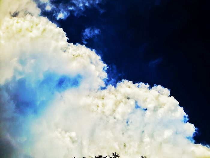 The world is full of great things that is ready to be discovered ^-^ Cloud - Sky Blue No People Tree Beauty In Nature Nature Day Sky Outdoors Multi Colored Aerobatics Pixelated First Eyeem Photo