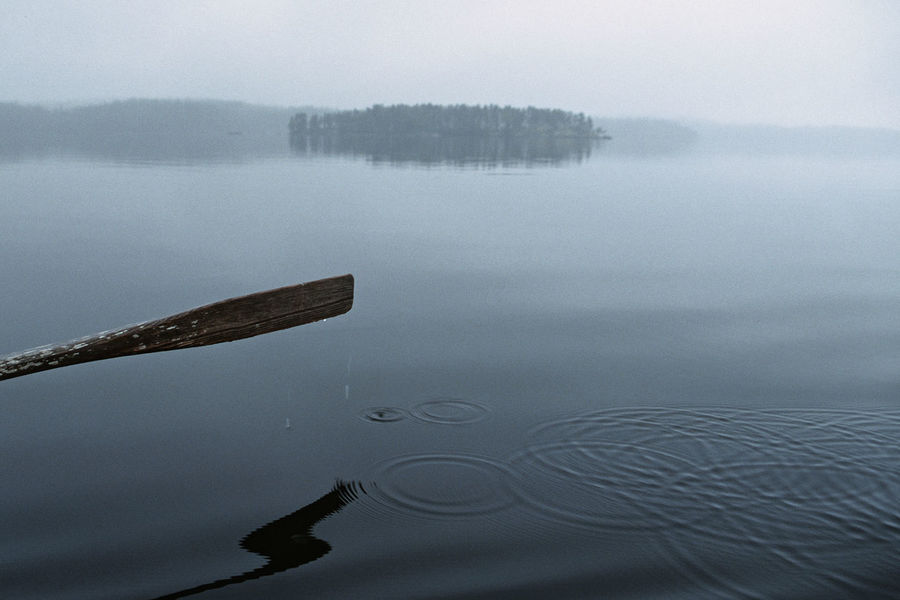 A Foggy Day By A Finnish Lake A Lake In Wilderness A National Park In Finland A Oar In Water Beauty In Nature Floating On Water Fog Harmony With Nature Lake Loneliness Nature No People Outdoors Peace Of Mind. Quiet Moments Reflection Rowing On A Lonely Lake Scenics Standing Water Tranquil Scene Tranquility Water