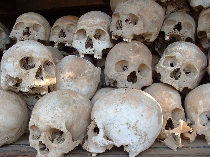 Close-up of human skulls on table