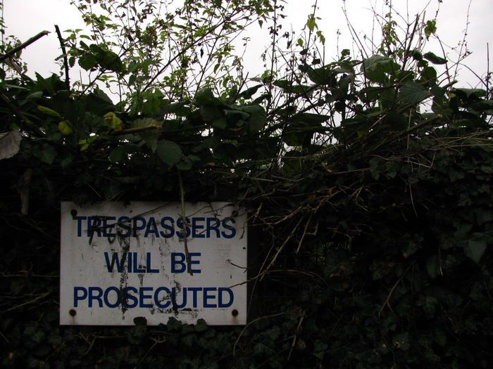 Abandoned Growing Information Information Sign Ivy Ivy Leaves Lush Foliage No Trespassing No Trespassing Sign Overgrown Prosecuted Prosecution Sign Signboard Text Trespassing Tresspassing Warning Sign Western Script