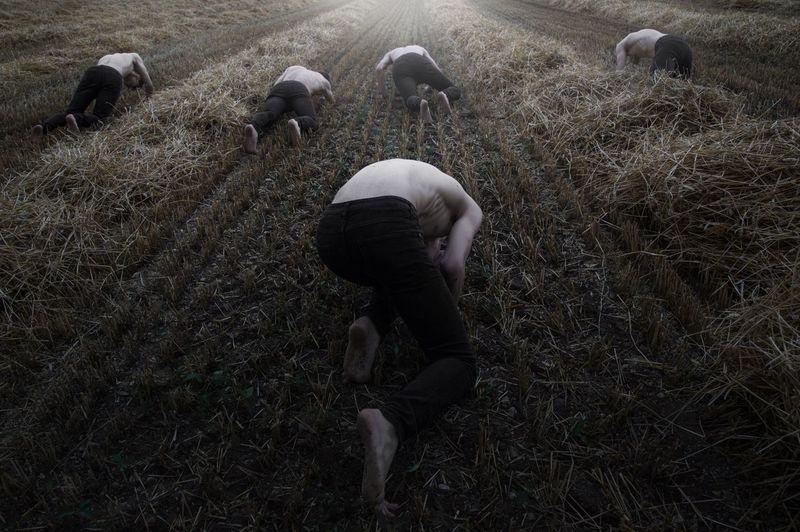 People working on field