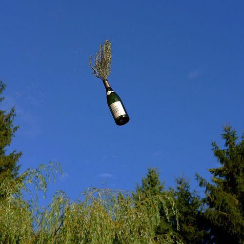 Flying Bottle Flying Rosemary