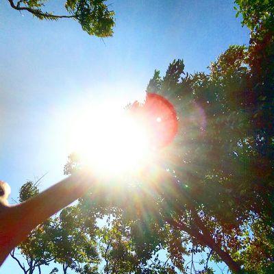 Summer Sunny☀ Sunny Day Sunny Afternoon Like