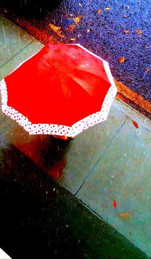 Phone Photography PetitsDetails Imagem Celular Chuva Sombrilla Day Outdoors Photography Cidade