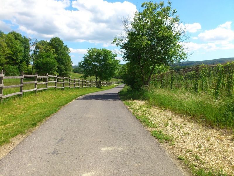 Blue Blue Sky Cloud Clouds And Sky Fence Green Road Scenery Scenery Shots Spring Springtime Trees