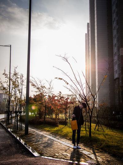 Gwangju Korea Street Photography Streetphotography Sun Sunny Sunshine Sunshine ☀ The City Light