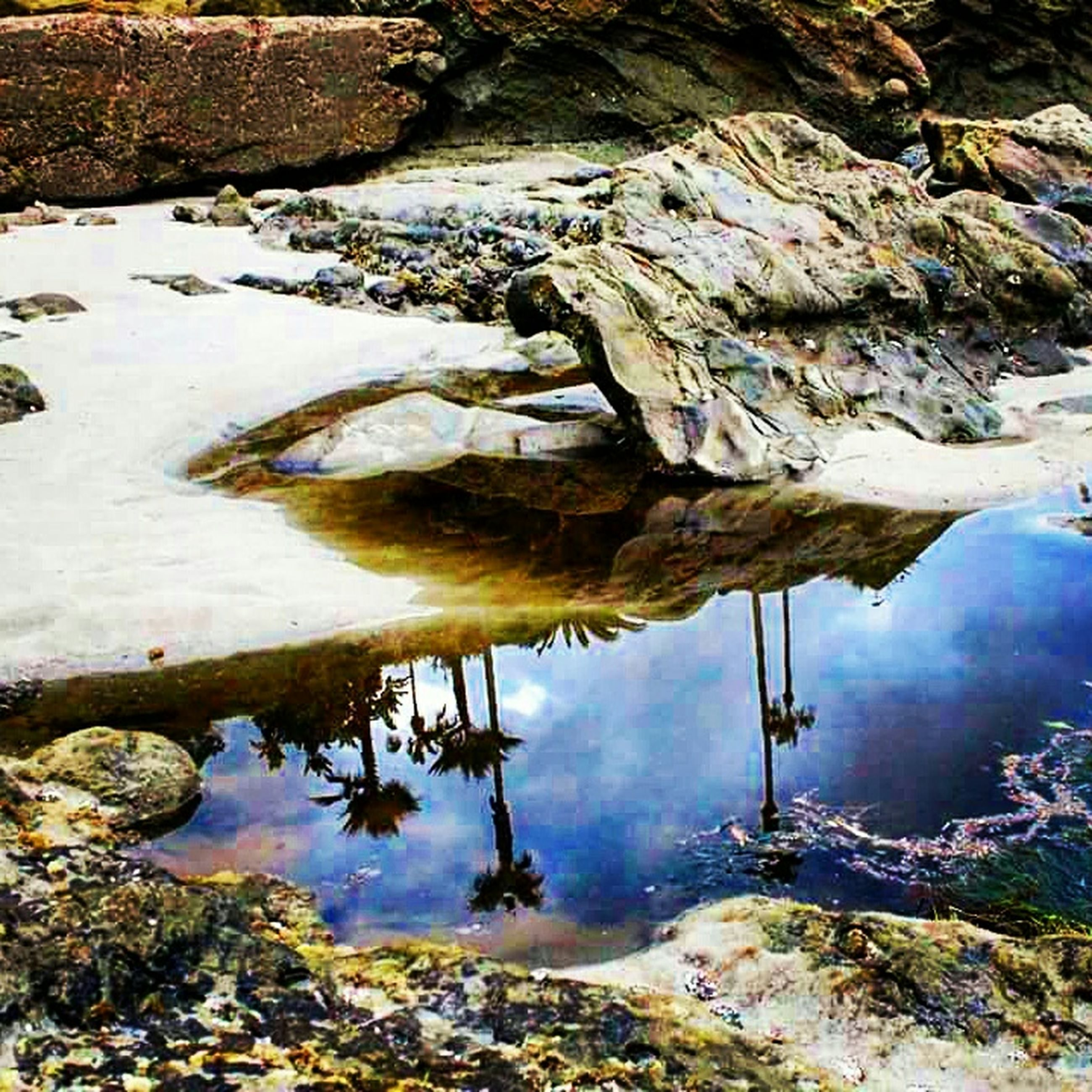 water, reflection, rock - object, lake, tranquility, tranquil scene, nature, stream, beauty in nature, scenics, river, standing water, rock, high angle view, day, stone - object, flowing water, outdoors, non-urban scene, idyllic
