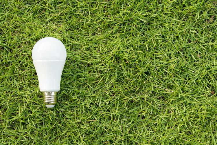 High angle view of light bulb on field