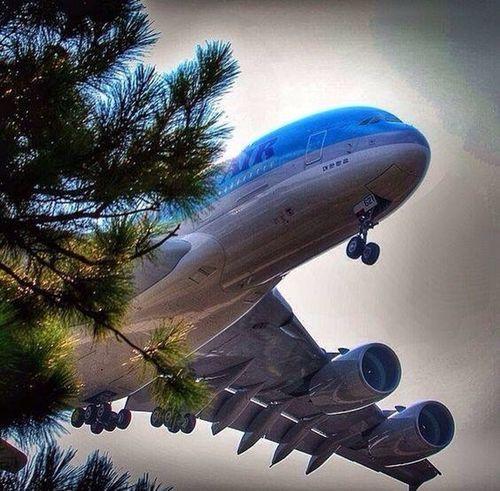 ✈️✈️ Hello guys 🛫🛫 ❤️ Love travel 😱 Flying Travel You Follow My Eye Em 💙 I Follow Back Hello World ❤ I Love Travel First Eyeem Photo Very Nice 😱😱 Real Picture Sky