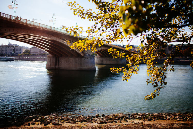 Autumn vibes Architecture Autumn Bridge Bridge - Man Made Structure Budapest Connection Danube Day Fall Fall Beauty Fall Colors Horizontal No People Outdoors River River View TeamCanon Travel Destinations Tree Water