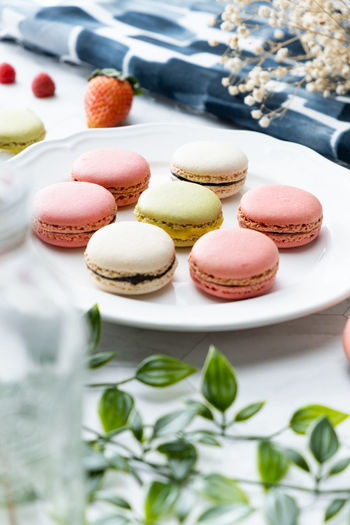Food Food And Drink Macaroon Sweet Food Indulgence Freshness Temptation Sweet Ready-to-eat Still Life Dessert No People Close-up Table Cake Indoors  Unhealthy Eating Baked Plate High Angle View French Food Tray