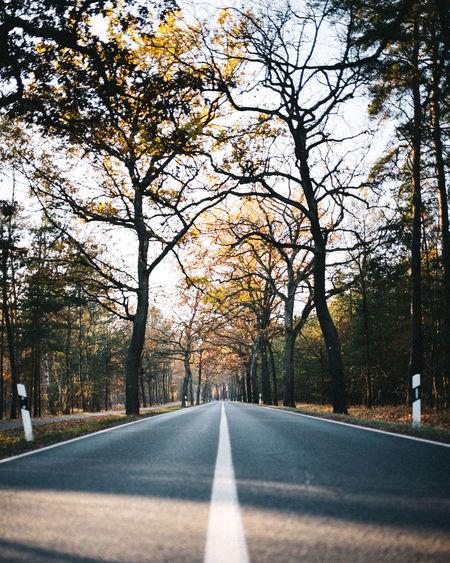 Landstraße 50