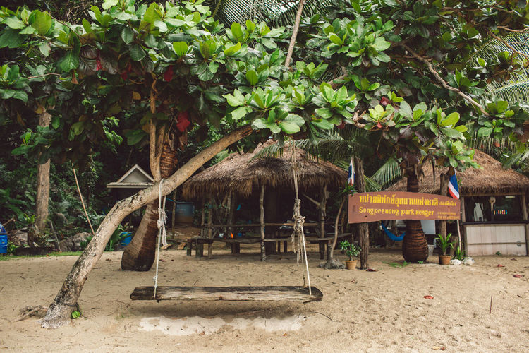 Plant Tree Day Nature Architecture Built Structure Roof Thatched Roof Land Growth Leaf Plant Part No People Building Exterior Outdoors Absence Building Hanging House Wood - Material