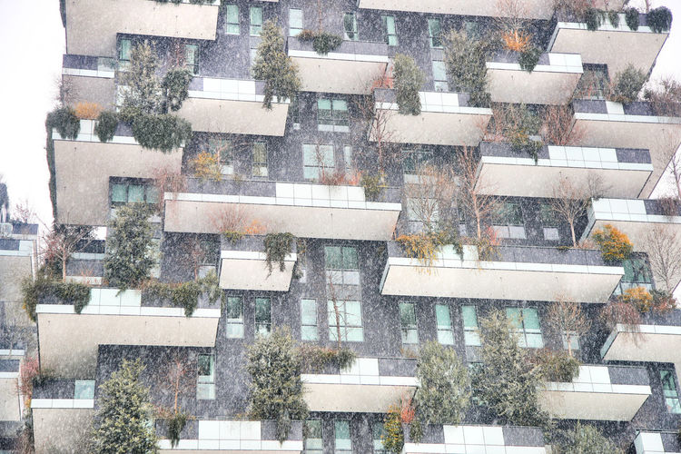 Snow in Milan (foto andrea cherchi) Architecture Bosco Verticale, Milan Milan Milan,Italy Milano Neve Snow Vertical Forest