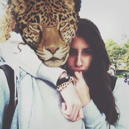 Friend Animal Face Cheetah