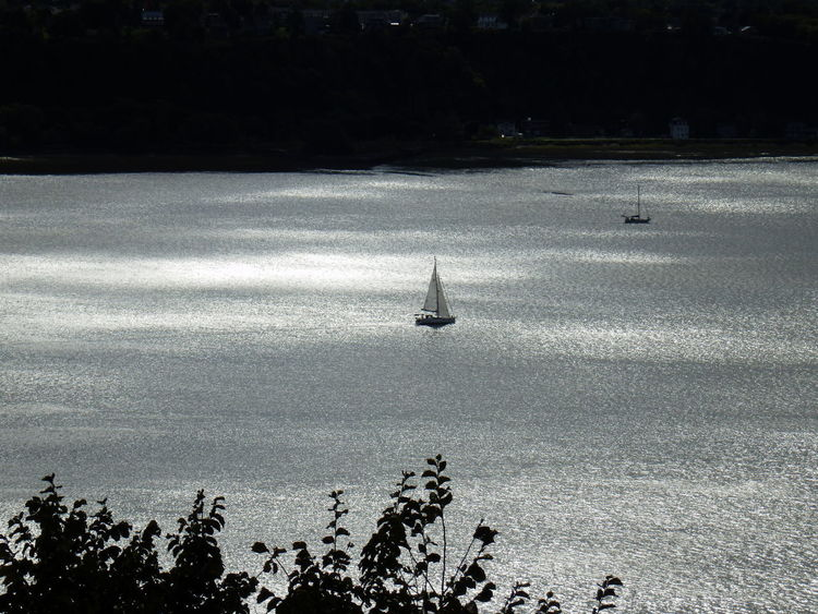 Saint Lawrence River Beauty In Nature City Day High Angle View No People Sailboat Sunlight Tranquility Travel