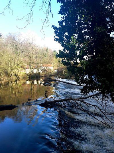 Gorge Waterfall Nidd Gorge Harrogate Beautiful Nature Water River River Nidd