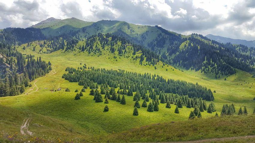 Weekendtrip Almaty Kok Zhaylau Colour Of Life