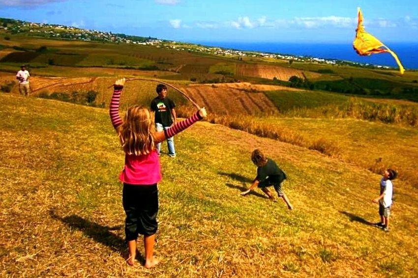 Yellow Reunion Island Kite Flying Enjoying Life Lemon By Motorola